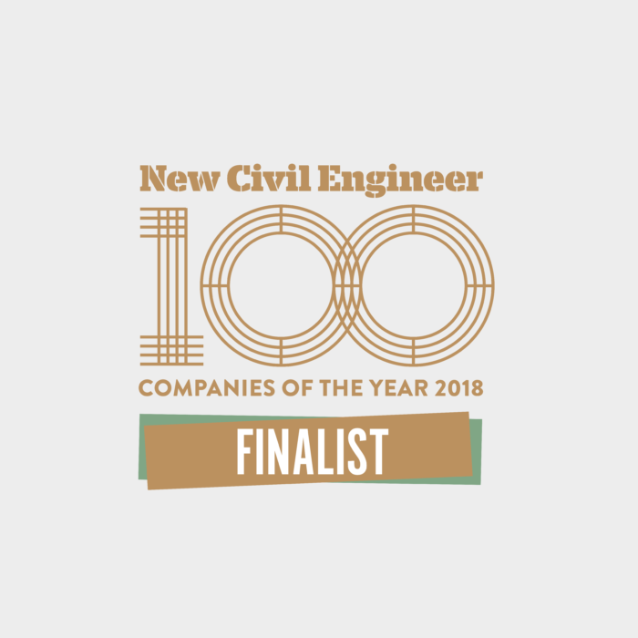 NCE100 Companies of the Year Finalist 2018